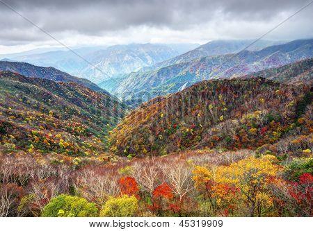 Landscape in Nikko National Park in Tochigi, Japan.