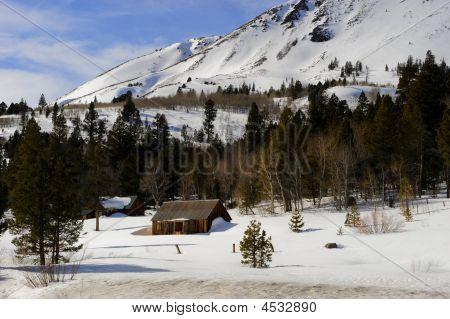 Eastern Slope Cabin