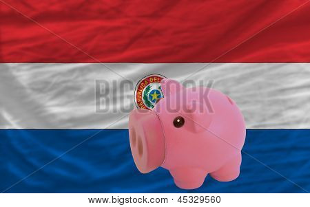 Piggy Rich Bank And  National Flag Of Paraguay