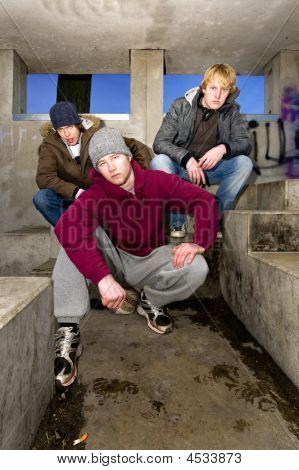 Suburban Gang