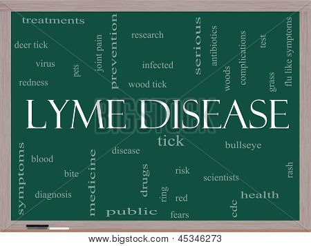 Lyme Disease Word Cloud Concept On Image & Photo | Bigstock