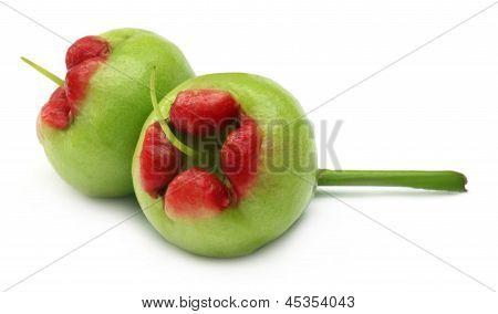 water apple or rose apple