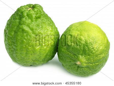 Bangladeshi lemon named as Ada Lebu