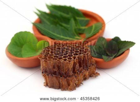 Medicinal herbs with honey comb