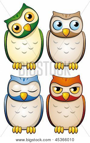 owl-set
