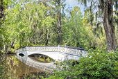 foto of bayou  - A bridge crosses a pond in the southern Low Country of South Carolina - JPG
