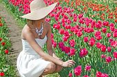 beautiful woman in tulips
