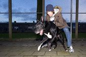stock photo of yanks  - An aggressive dog being set loose by his vicious owner in an suburbian area - JPG