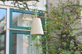 Bird Feeders In A Spring Town