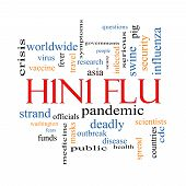 H1N1 Flu Word Cloud Concept