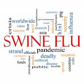 Swine Flu Word Cloud Concept
