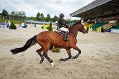 MOSCOW - JUN 9: Rider on horse at international competitions in show jumping CSI3 Vivat, Russia in e