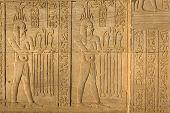 pic of ptolemaic  - Detailed view of ancient Egyptian hieroglyphic carvings in Kom Ombo temple - JPG