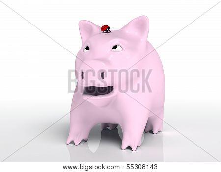 Surprised Piggy Bank With Ladybug On Head