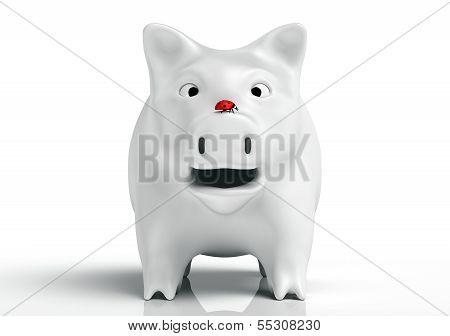 Surprised White Piggy Bank