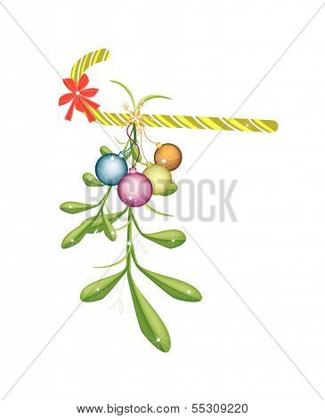 Green Mistletoe With Red Bow And Candy Cane