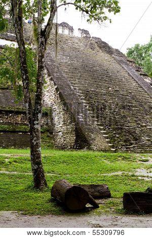 Tikal, Mayan Ruins