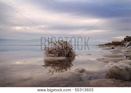 Sunrise On The Dead Sea