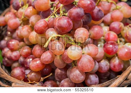 Close Up Grape On Fruit Stall