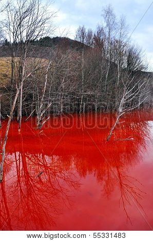 Water Pollution Of A Gold Mine Exploitation In Rosia Montana, Romania