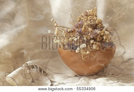 Bouquet of everlasting flowers in a vase of clay