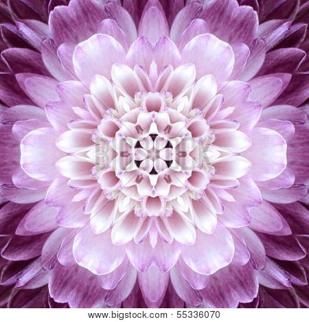 Pink Concentric Flower Center. Mandala Kaleidoscopic Design
