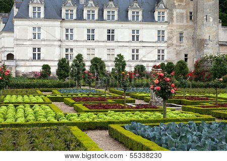 Gardens and Chateau de Villandry in Loire Valley in France
