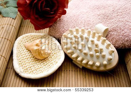 Massage brush with Mussel and Fleece Towel