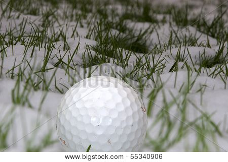 Single Golf Ball In The Snow