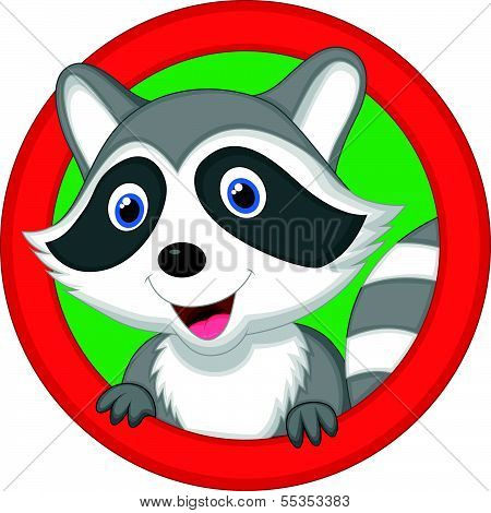 Cute raccoon cartoon posing