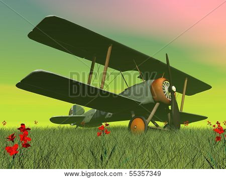 Biplane on the grass - 3D render