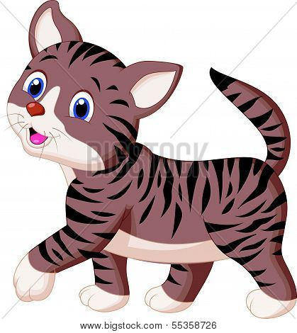Cute cat cartoon walking