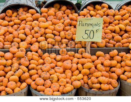 Fifty Cent Pumpkins
