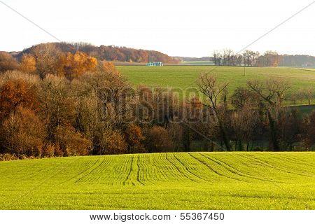 Gently Rolling Hills Farmland