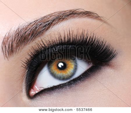 Female Eye With Black Long Eyelashes