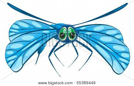 Vector illustration of the dragonfly