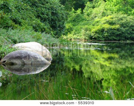 Gray Lake Rock