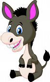 picture of wild donkey  - Vector illustration of Cute baby donkey cartoon - JPG