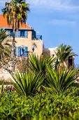 House With Palms In Jaffa, A Southern Oldest Part Of Tel Aviv - Jaffa