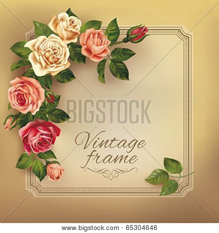 Vintage frame with beautiful roses. Vector eps 10.