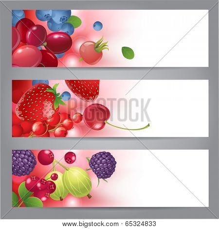 3 horizontal banners with berries