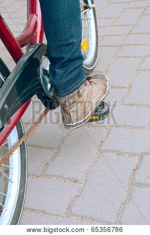 The Pedal Bike