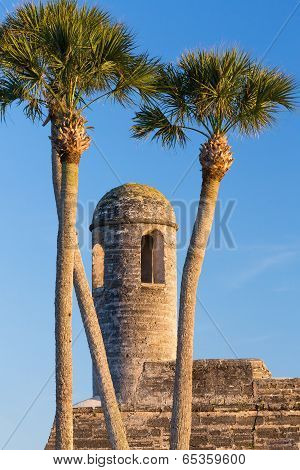Bell Tower And Palms
