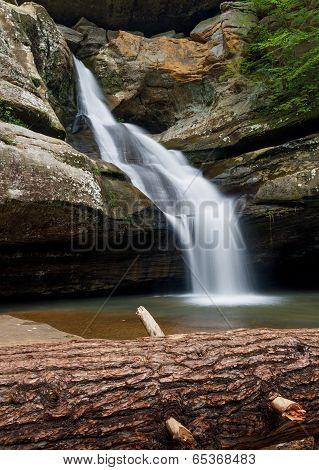 Cedar Falls With Fallen Tree
