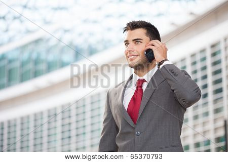 Portrait of a young handsome business man talking on the cell phone