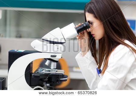 Female scientist working in a laboratory