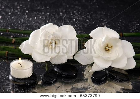 spa concept �¢�?�?gardenia flower with white candle and bamboo grove