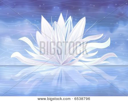 Vector Water Lily