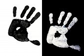 foto of dna fingerprinting  - Detailed view of a black hand print on a white background and white hand on black background - JPG