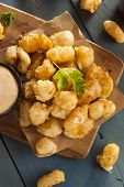 pic of curd  - Beer Battered Wisconsin Cheese Curds with Dipping Sauce - JPG